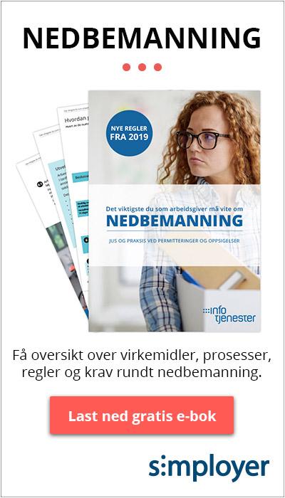 Last ned gratis e-bok: Nedbemanning